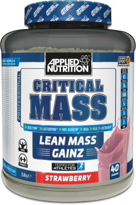 Critical mass 2,4kg